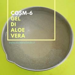Home Gel di Aloe Vera – COSM-6 COSM-6