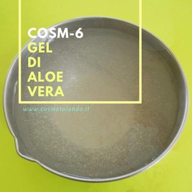 Gel di Aloe Vera – COSM-6