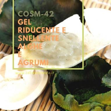 Home Gel riducente e snellente alghe e agrumi – COSM-42 COSM-42