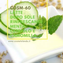 Home Latte dopo sole rinfrescante menta, cetriolo e camomilla – COSM-60 COSM-60