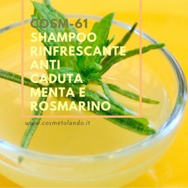 Home Shampoo rinfrescante anti caduta menta e rosmarino – COSM-61 COSM-61
