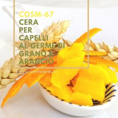 Home Cera per capelli al germe di grano e arancio – COSM-67 COSM-67