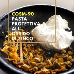 Home Pasta protettiva all'ossido di zinco – COSM-90 COSM-90