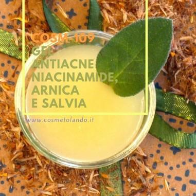Home Gel antiacne niacinamide, arnica e salvia – COSM-109 COSM-109