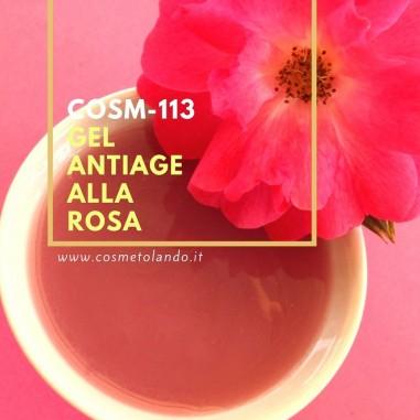 Home Gel antiage alla rosa – COSM-113 COSM-113