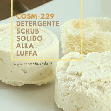 RICETTE COSMETICI FAI DA TE Detergente Scrub Solido alla Luffa – COSM-229 COSM-229