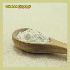Polveri Supporto Make Up Biossido di titanio anatasio