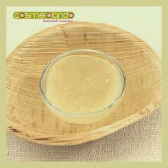 Tensioattivi Coco Glucoside e Glyceryl Oleate
