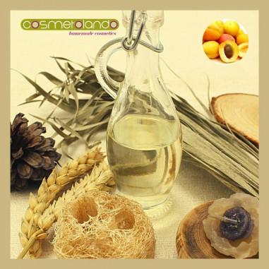 Oli Vegetali Convenzionali e Bio Olio di Albicocca - Prunus armeniaca