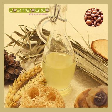 Oli Vegetali Convenzionali e Bio Olio di Argan - Argania spinosa