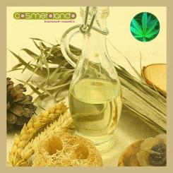 Oli Vegetali Convenzionali e Bio Olio di Canapa - Cannabis Sativa Seed Oil