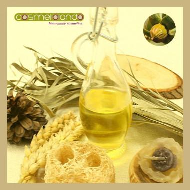 Oli Vegetali Convenzionali e Bio Olio di Jojoba - Simmondsia chinensis
