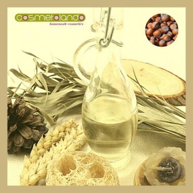Oli Vegetali Convenzionali e Bio Olio di Nocciola - Corylus avellana
