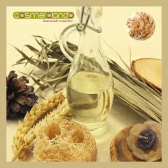 Oli Vegetali Convenzionali e Bio Olio di Crusca di Riso - Oryza Sativa