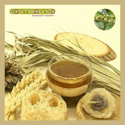 Oli Vettori Convenzionali e Bio Olio di Neem Bio - Melia Azadirachta