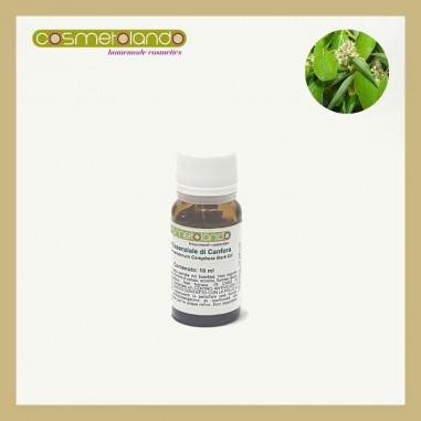 Oli Essenziali Olio Essenziale di Canfora - Cinnamomum camphora
