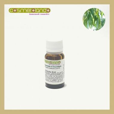 Oli Essenziali Olio Essenziale di Eucalipto -  Eucalyptus globulus