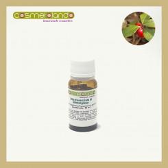 Oli Essenziali Olio Essenziale di Wintergreen - Gaultheria Procumbens