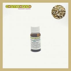Oli Essenziali Olio Essenziale di Finocchio Dolce - Foeniculum Vulgare var. Dulce