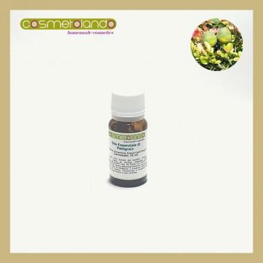 Oli Essenziali Olio Essenziale di Petitgrain - Citrus Aurantium var. Amara
