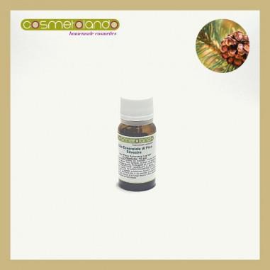 Oli Essenziali Olio Essenziale di Pino Silvestre -  Pinus sylvestris